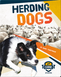 Canine Athletes: Herding Dogs