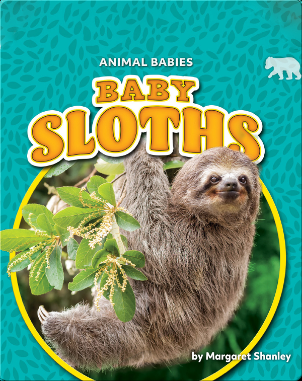 Animal Babies: Baby Sloths