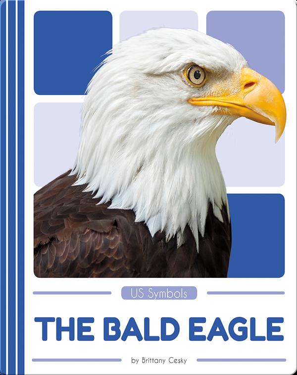 US Symbols: The Bald Eagle