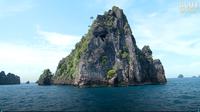 Jonathan Bird's Blue World: Sea Snake Island