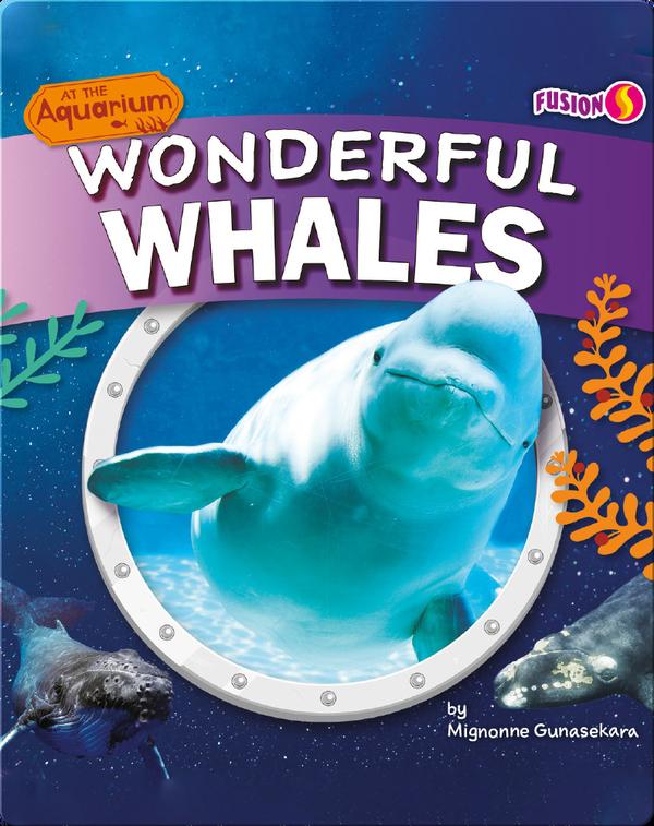 At the Aquarium: Wonderful Whales