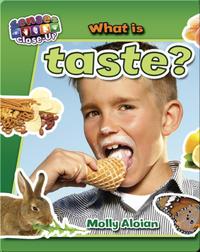 What is Taste?