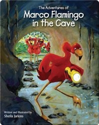 Marco Flamingo in the Cave