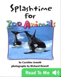 Splashtime for Zoo Animals