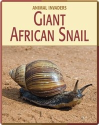 Animal Invaders: Giant African Snail