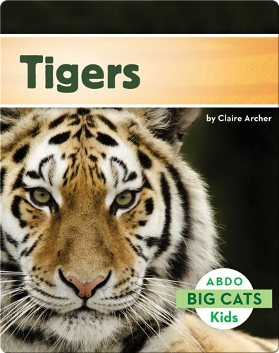 Big Cats: Tigers