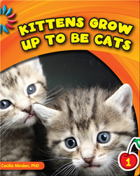 Kittens Grow Up To Be Cats