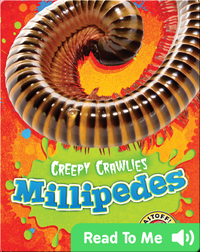 Creepy Crawlies: Millipedes