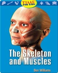 The Skeleton and Muscles