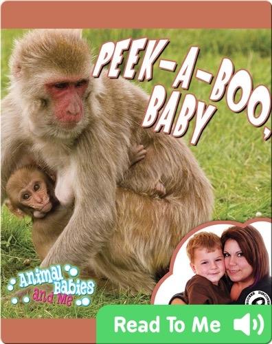Peek-A-Boo, Baby