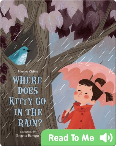 Where Does Kitty Go in the Rain?