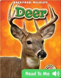 Deer: Backyard Wildlife