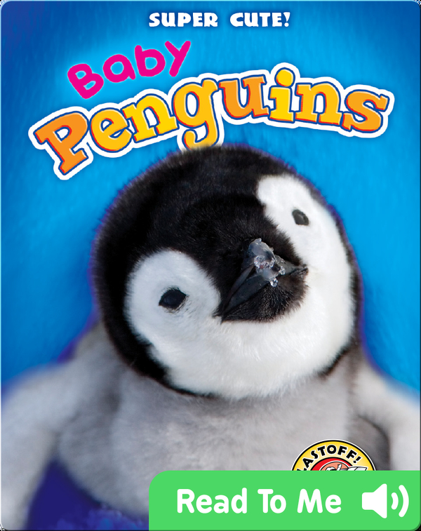 Super Cute! Baby Penguins