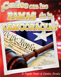 ¿Cuáles son las ramas de la democracia?
