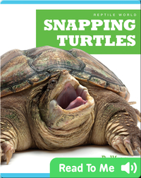Reptile World: Snapping Turtles