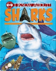 I Know About! Sharks