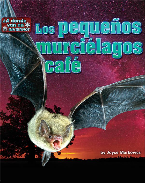 Los pequeños murciélagos café (bats)
