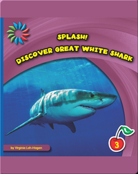 Discover Great White Sharks