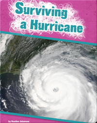 Surviving a Hurricane