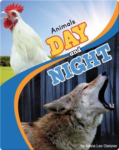 Animals Day and Night
