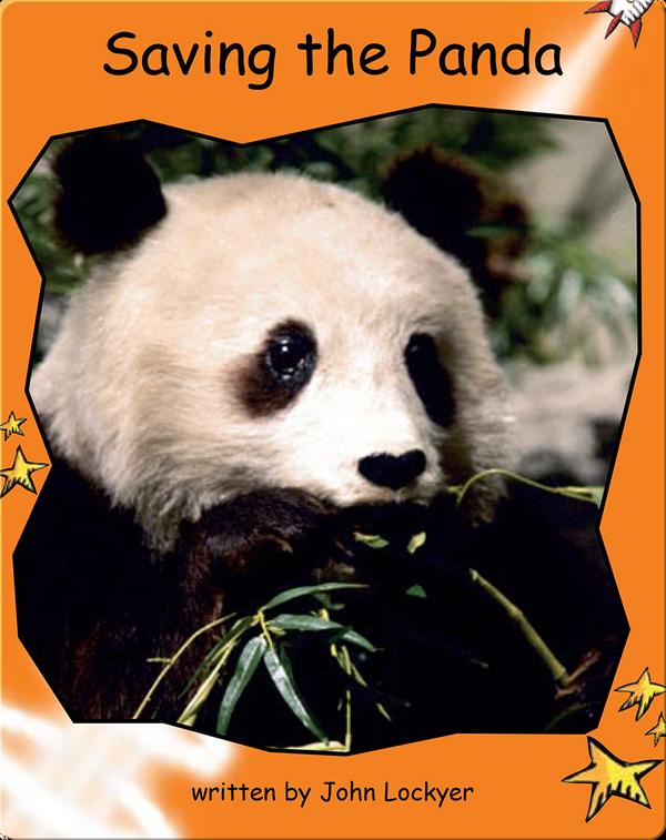 Saving the Panda