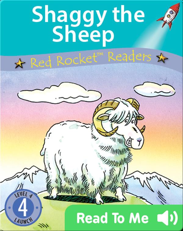 Shaggy the Sheep