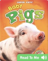 Super Cute! Baby Pigs