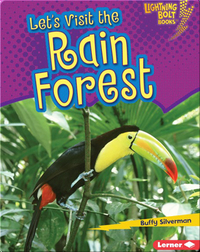 Let's Visit the Rain Forest
