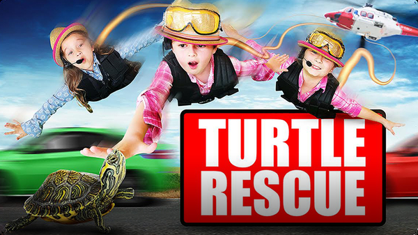 Turtle Rescue | Turtle Rescued from the Highway of Doom!