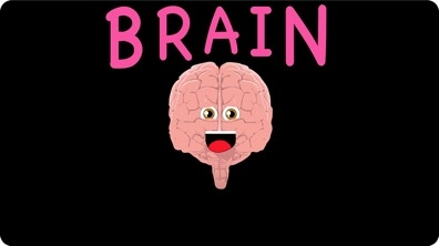 The Human Body for Kids / Brain Song for Kids
