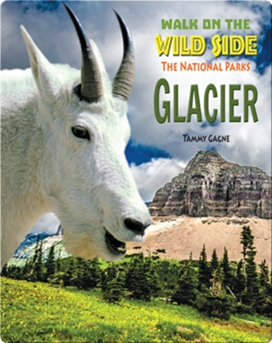 Walk on the Wild Side: Glacier