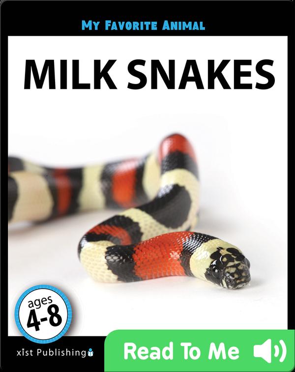 My Favorite Animal: Milk Snakes