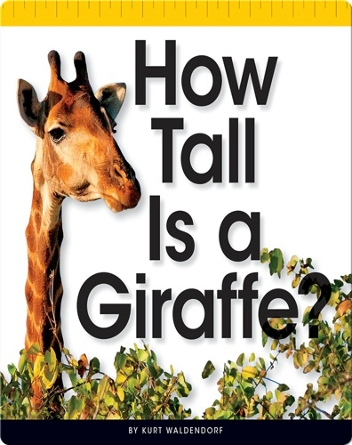 How Tall Is a Giraffe?