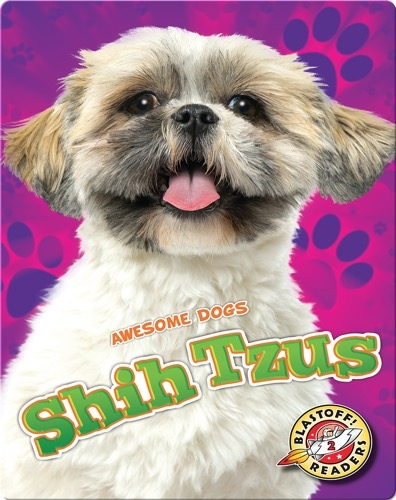 Awesome Dogs: Shih Tzus
