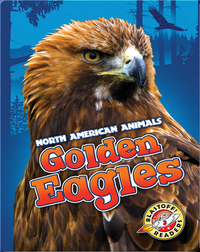 North American Animals: Golden Eagles