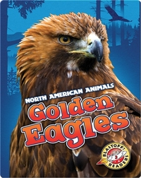North American Animals: Golden Eagles