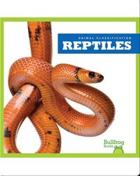 Animal Classification: Reptiles