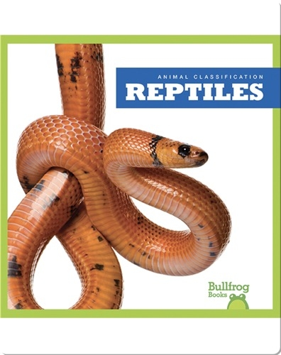 Animal Classification: Reptiles