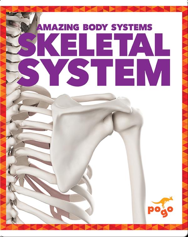 Amazing Body Systems: Skeletal  System