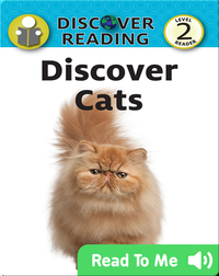 Discover Cats