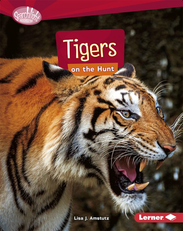 Tigers on the Hunt