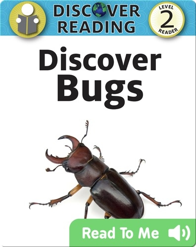 Discover Bugs