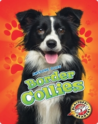 Awesome Dogs: Border Collies