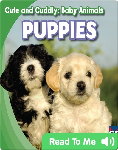 Cute and Cuddly: Puppies