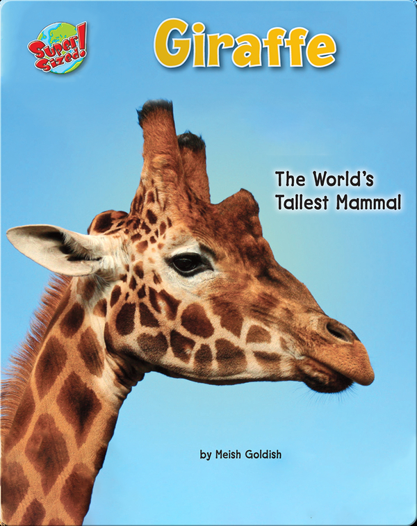 Giraffe: The World's Tallest Mammal