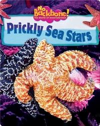 Prickly Sea Stars