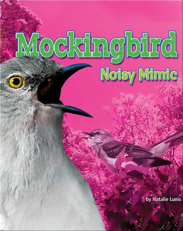 Mockingbird: Noisy Mimic
