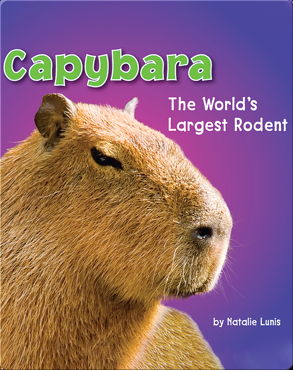 Capybara: The World's Largest Rodent