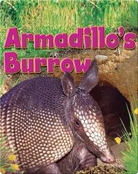 Armadillo's Burrow