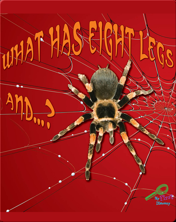 What Has Eight Legs And… ?